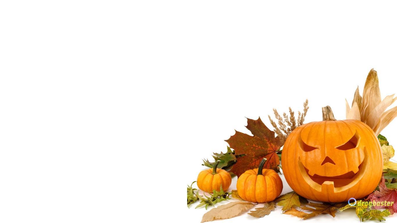Halloween Desktop Wallpaper Hd Speciale Halloween Sfondi Pc Desktop E Cellulare