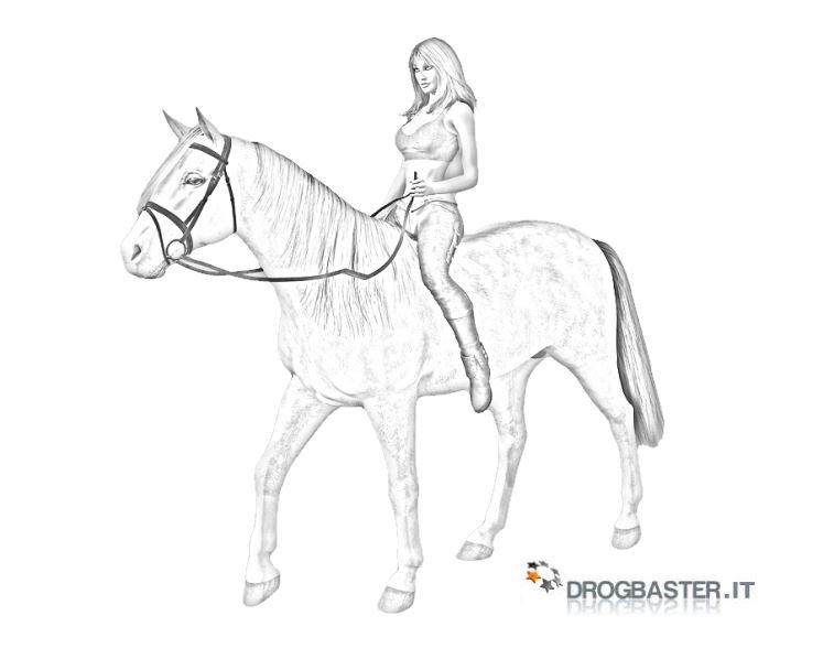 Cavallo immagini e disegni da stampare for Immagini cavalli da disegnare
