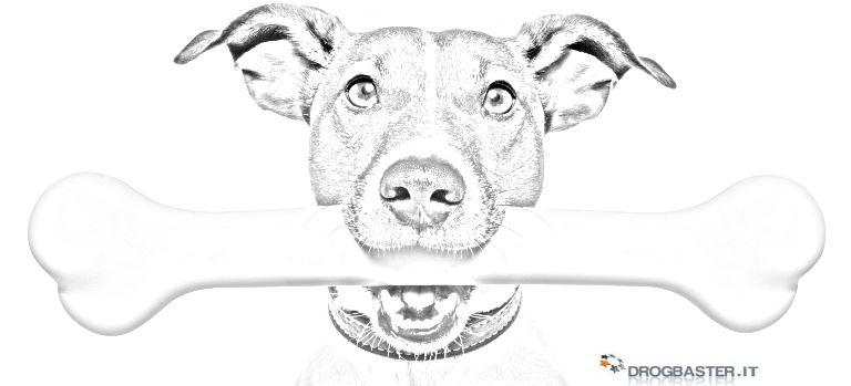 Cani disegni da stampare e colorare - Cucciolo da colorare stampabili ...