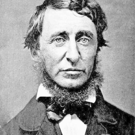 486px-henry_david_thoreau1353864663277