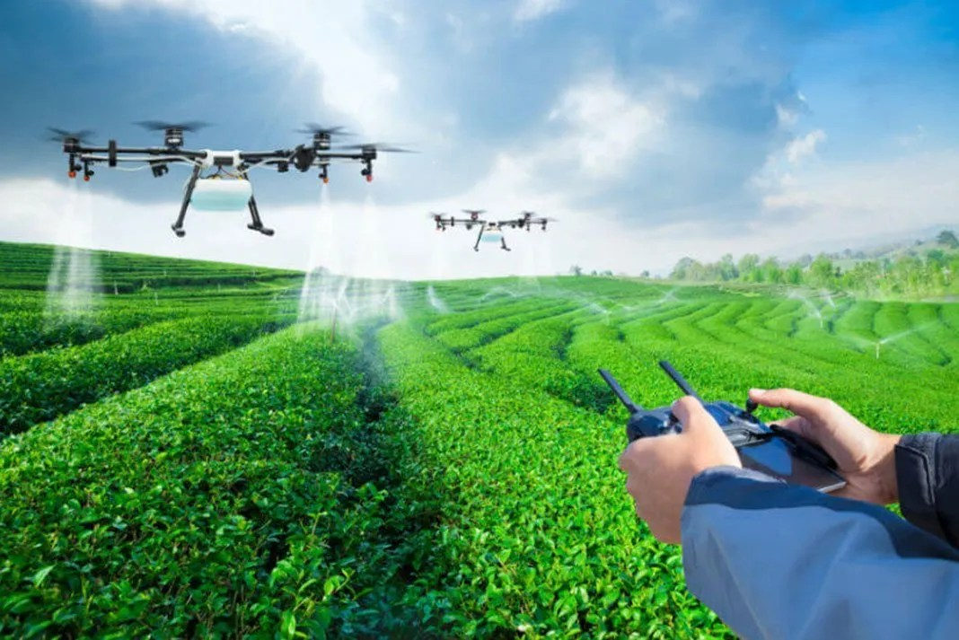 Tea Wallpaper Quotes Drones In Agriculture Tree Planting Drones Dronesinsite
