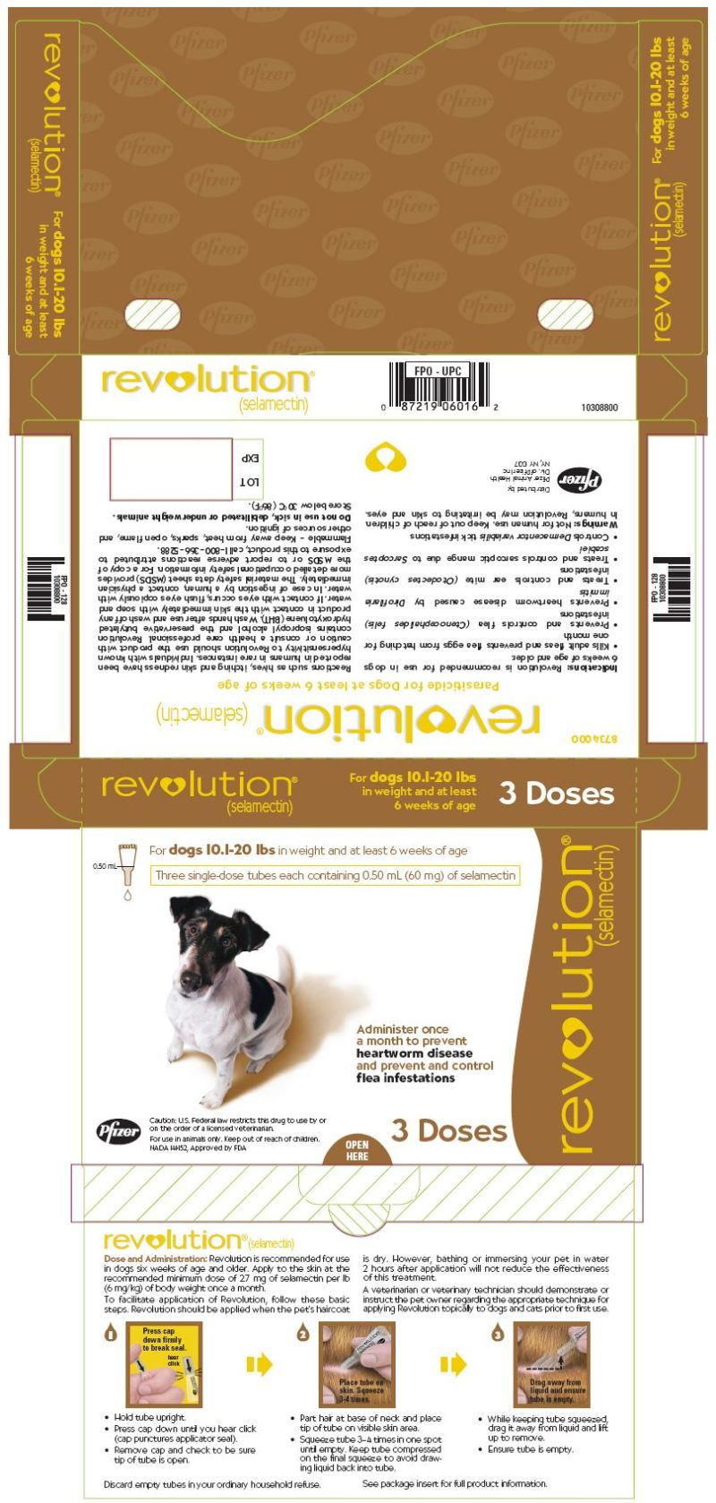 Large Of Ivermectin For Cats