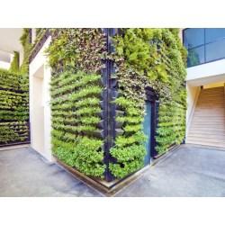 Nice Health Wellness Balanced Living Gardening Living Walls Vertical Gardens 2620x1877 000020052043 1024x768 Vertical Garden Wall Structure Vertical Garden Wall Spain