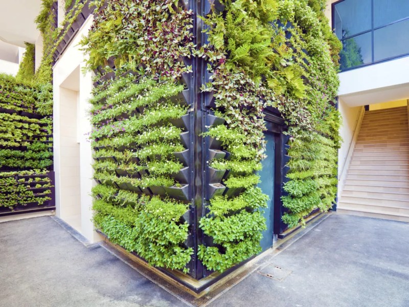 Large Of Vertical Gardens Walls