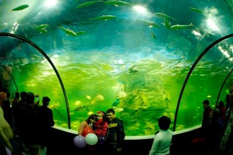 6 gợi ý vui chơi ngày Tết Dương lịch ở Hà Nội