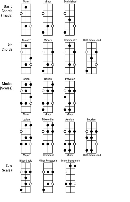 Basic and 7th Chords, Modes, and Solo Scales for Bass Guitar - dummies