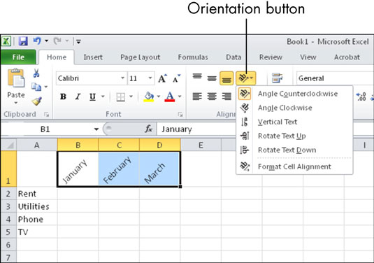 How to Format Text in Cells in Microsoft Excel - dummies