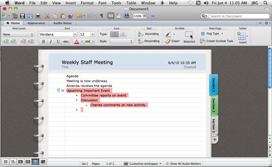 Using Notebook Layout View in Word for Mac 2011 - dummies