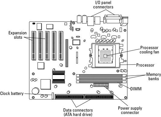 circuitry for dummies
