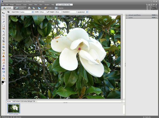 Adding a Digital Frame to Your Digital Photo with Adobe Photoshop
