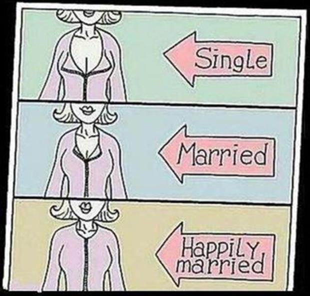 single, in a relationship, married, funny pictures