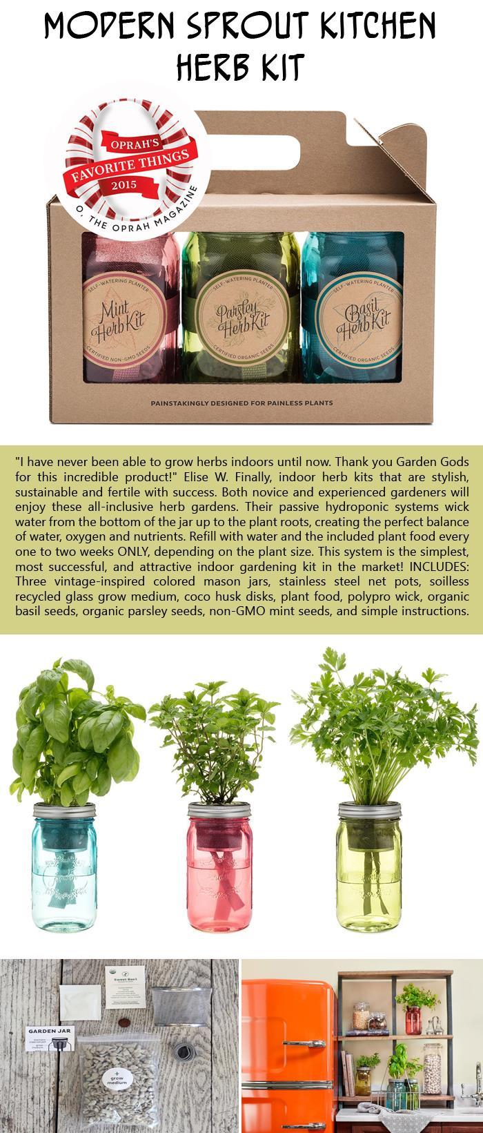 Modern Sprout kitchen herb kit