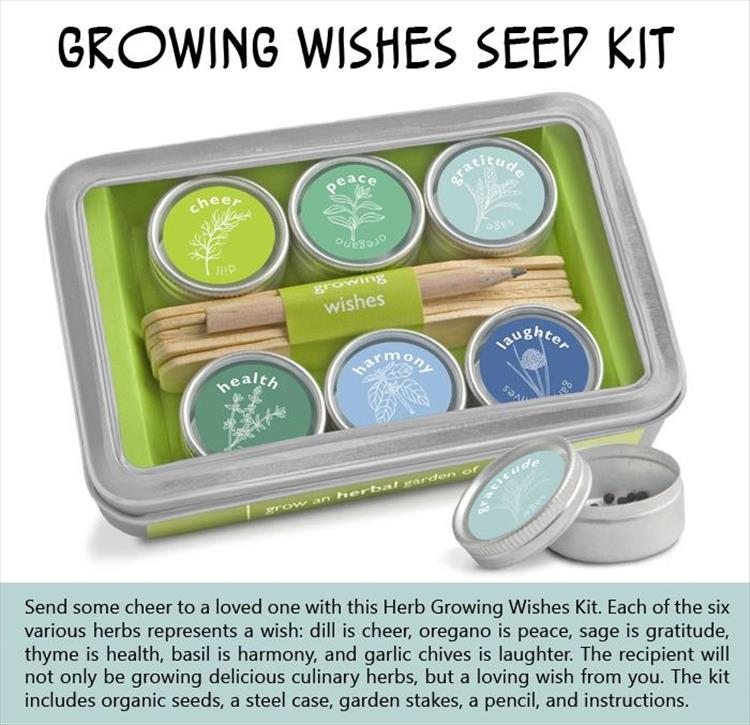 Growing Wishes Seed Kit