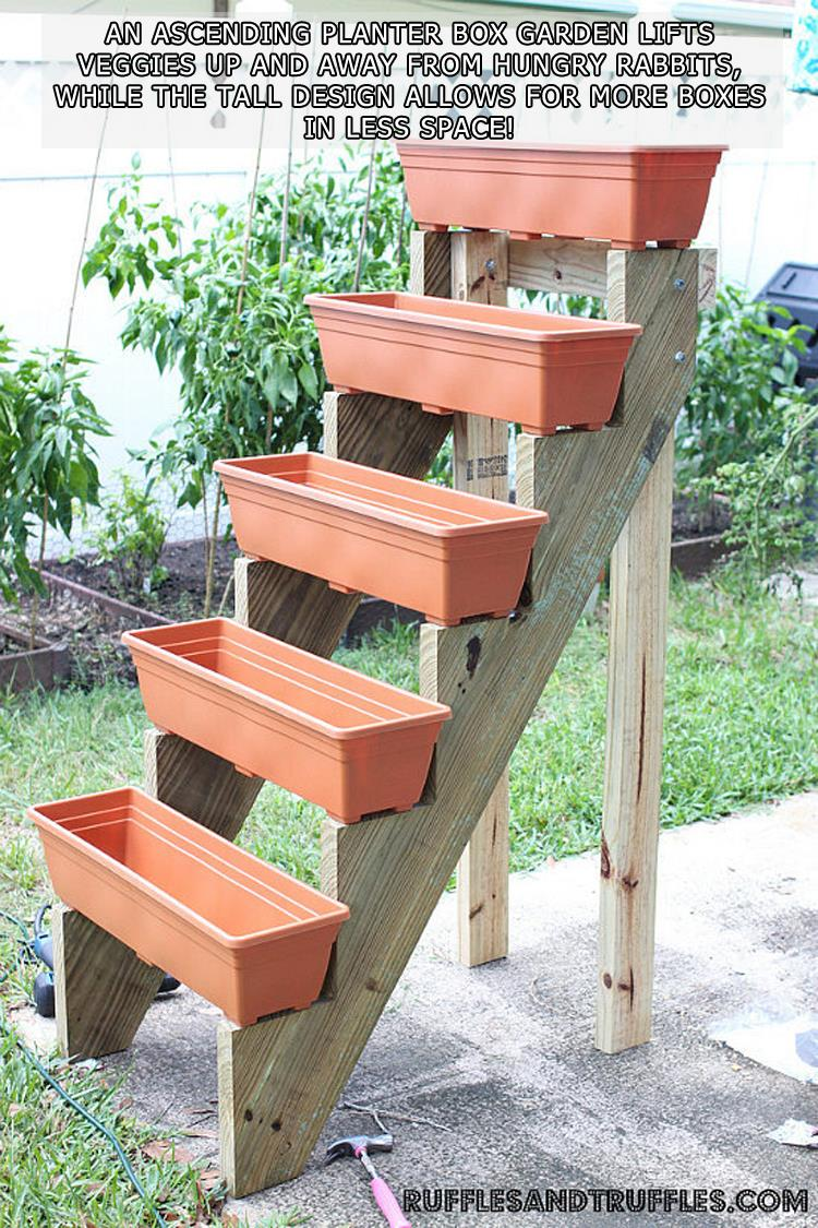Step Planter Boxes
