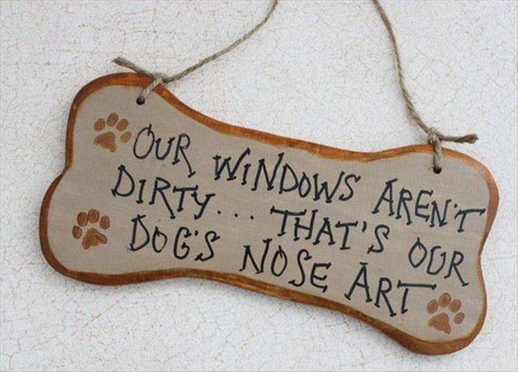 dog owners (5)
