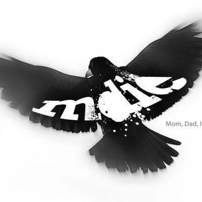 MDIE logo
