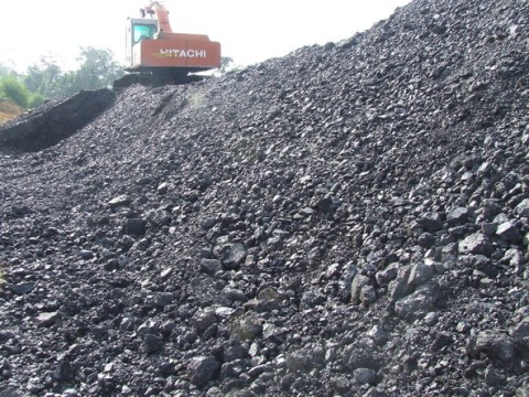 Stock pile batubara steam coal.