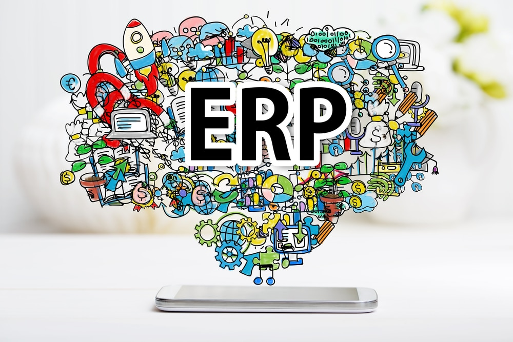 Are Google, Facebook et Al. the new ERPs ?