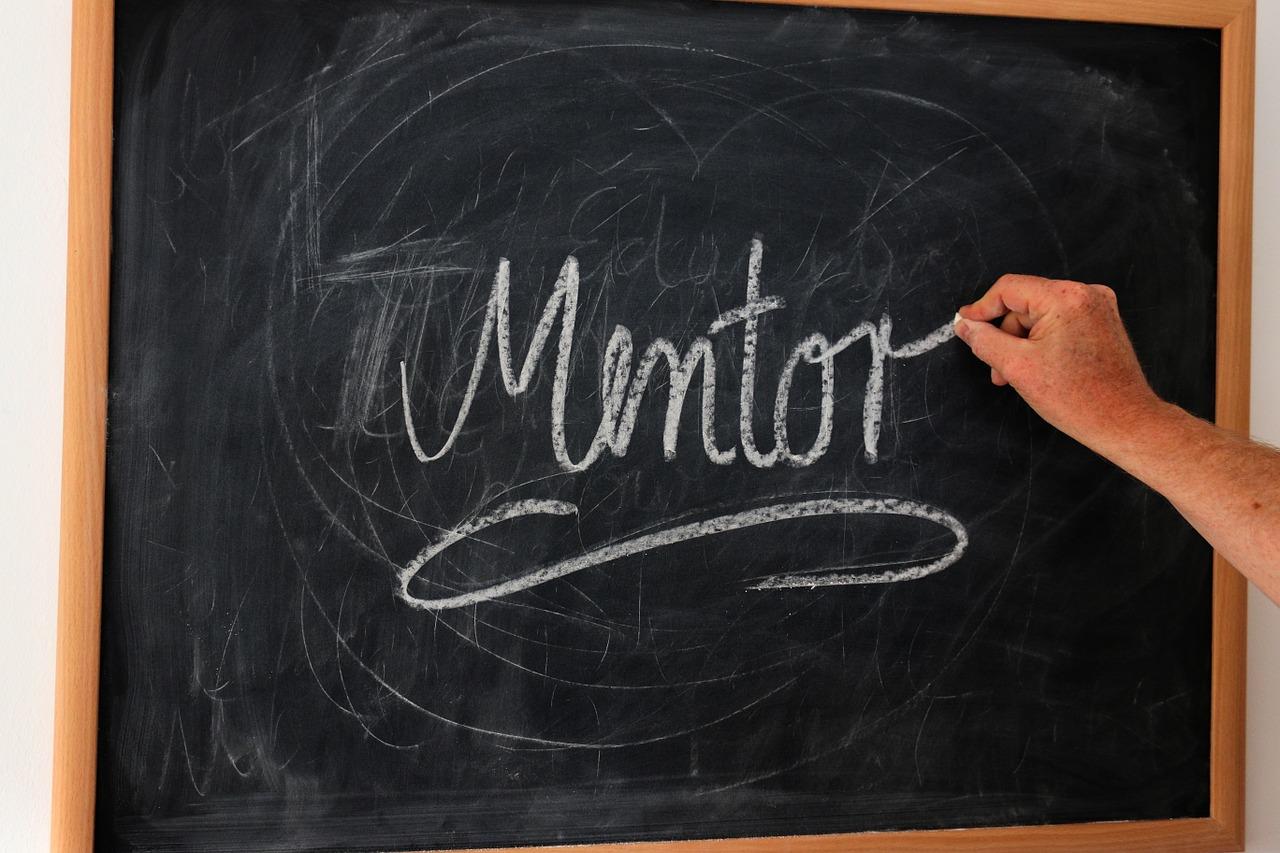 i need a mentor