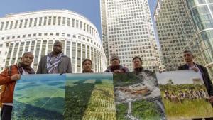 Palmolie-vrij, regenwouden, palmolie boycot