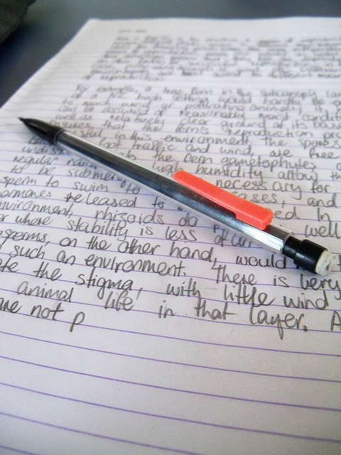 Tips and tricks to be a successful college student \u2013 The Inquirer