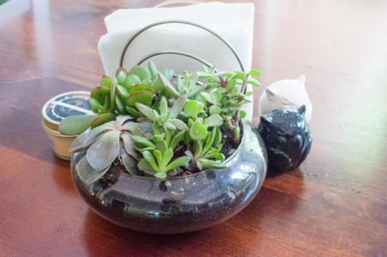 Quick and Easy Succulent Planter TutorialDwell Beautiful
