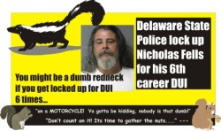 Nicholas J Fell 6th DUI Delaware 071811