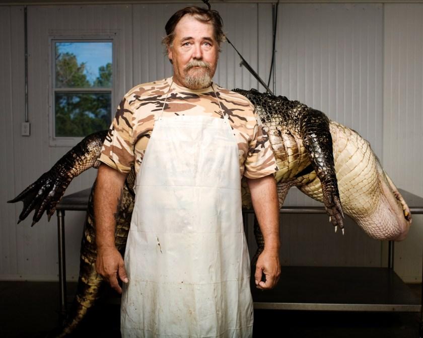 © Adam Krause. Alligator
