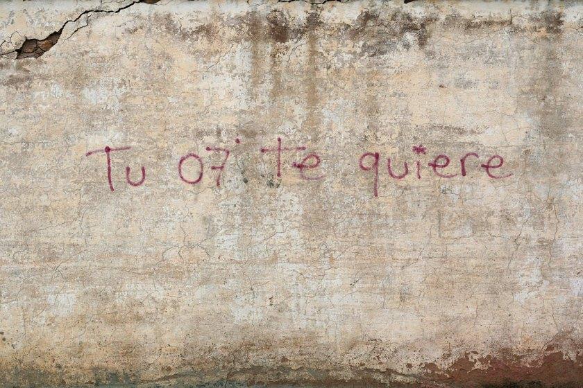 Foto: Pablo Ruiz. Massarojos, Valencia.