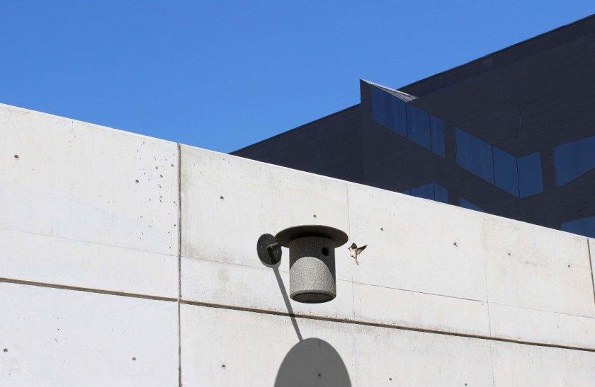 Medalla ADI de Opinión Proyecto: KIN Diseño: Miguel Ángel Amengual Perelló Escuela: ESDAP Catalunya. Campus Llotja. Tutor: Guillem Ferran