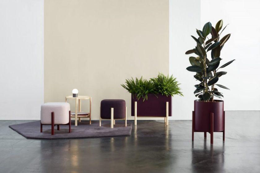 Ashi Diseño : Emiliana Design Studio - Ana Mir, Emili Padrós Empresa : Hobby Flower