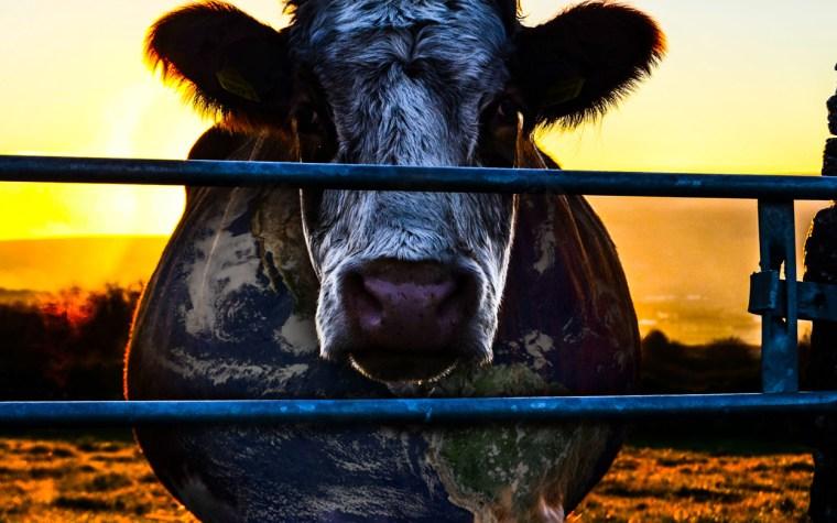 Health Matters #7 | Milk addiction | Part 2