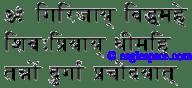 durga gayatri in sanskrit