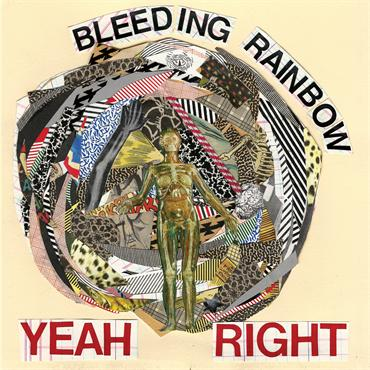 Bleeding Rainbow Yeah Right cover