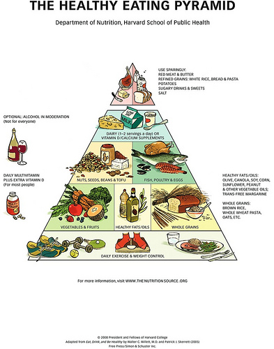 US Government food pyramid, recommended servings