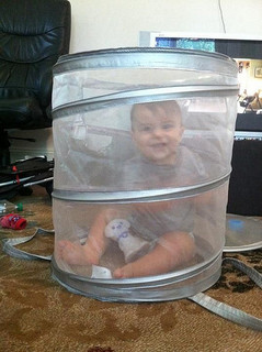 happy baby in mesh container (he can get out)