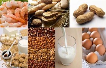 common food allergens: wheat, soy, shellfish, milk, nuts