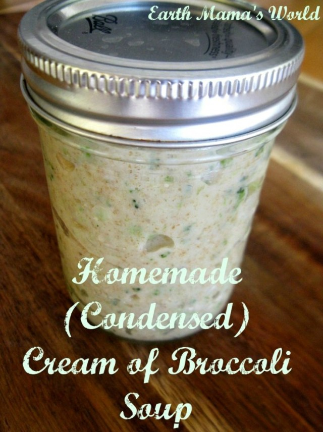 Homemade Condensed Cream of Broccoli Sou