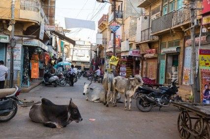 Jaisalmer Street
