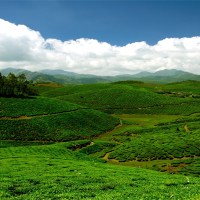 Top Romantic Hill Stations in South India