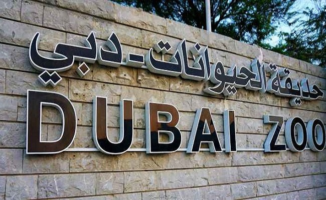Dubai Municipality To Close Jumeirah Zoo Soon East Coast Daily