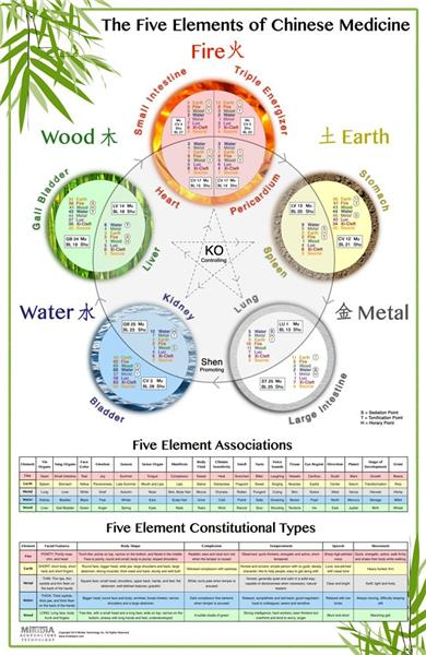 The World\u0027s Best Five Element Acupuncture Wall Chart