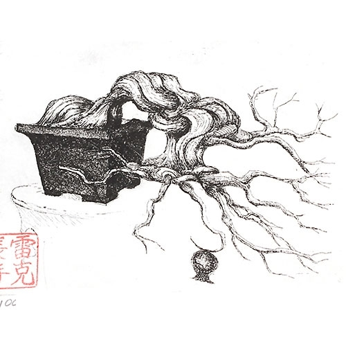 bonsai print drawing