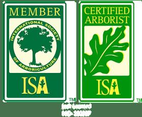certified arborist tree care service