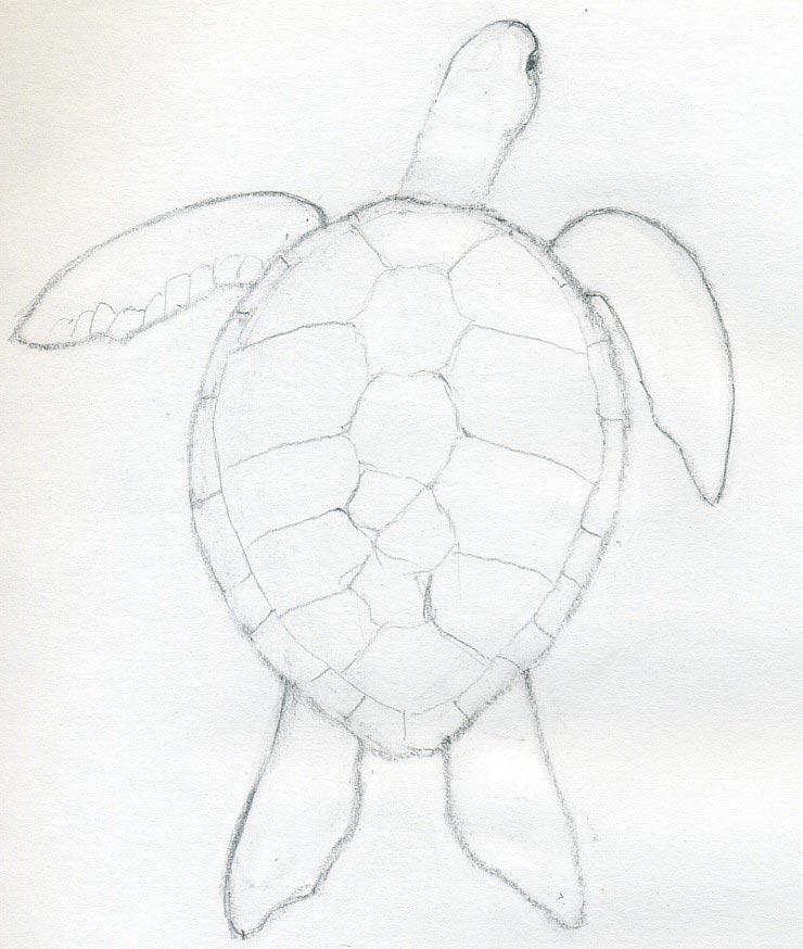 Drawing Professionally \u2013 Easy Peasy All-in-One High School