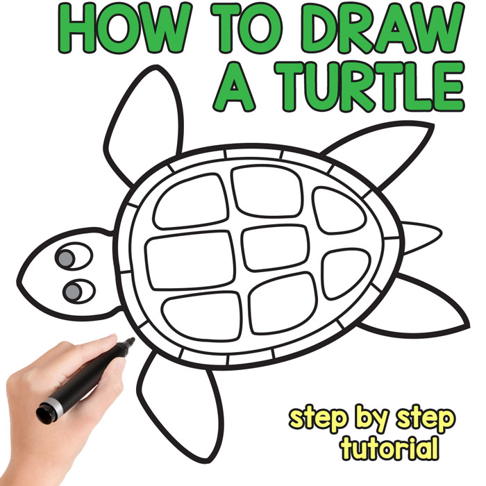 How to Draw a Turtle - Step by Step Drawing Tutorial - Easy Peasy