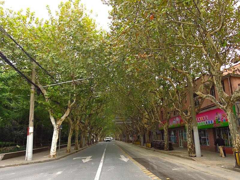 Shaoxing Road