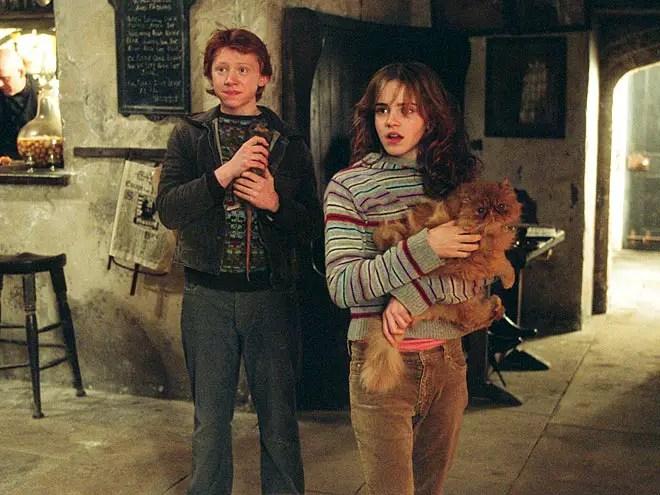grattastinchi-hermione-articolo