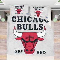 Buy NBA Chicago Bulls Bedding Comforter Set | 50% Off ...