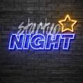 logo-startupnight
